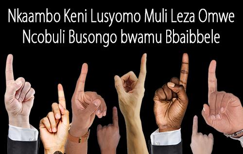 Nkaambo Keni Lusyomo Muli Leza Omwe Ncobuli Busongo bwamu Bbaibbele