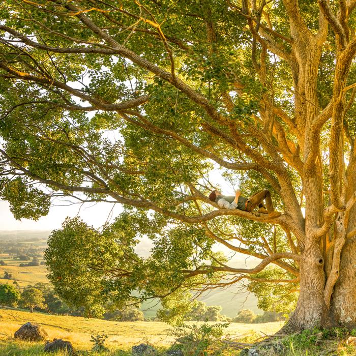 muž na stromě na venkově