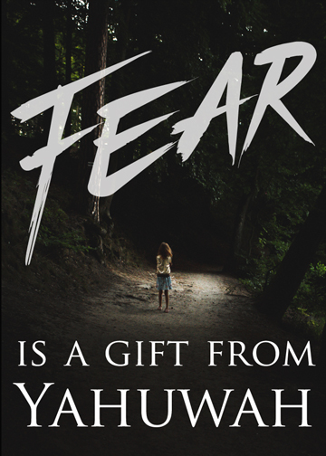 ''Fear is a gift'' Video Release