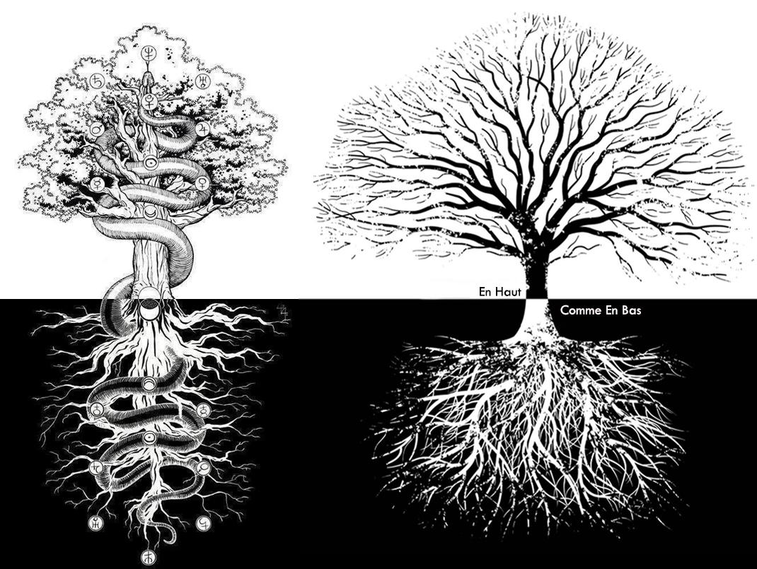 arbre de la connaissance du bien et du mal, ce qui est en bas, est comme ce qui est en haut