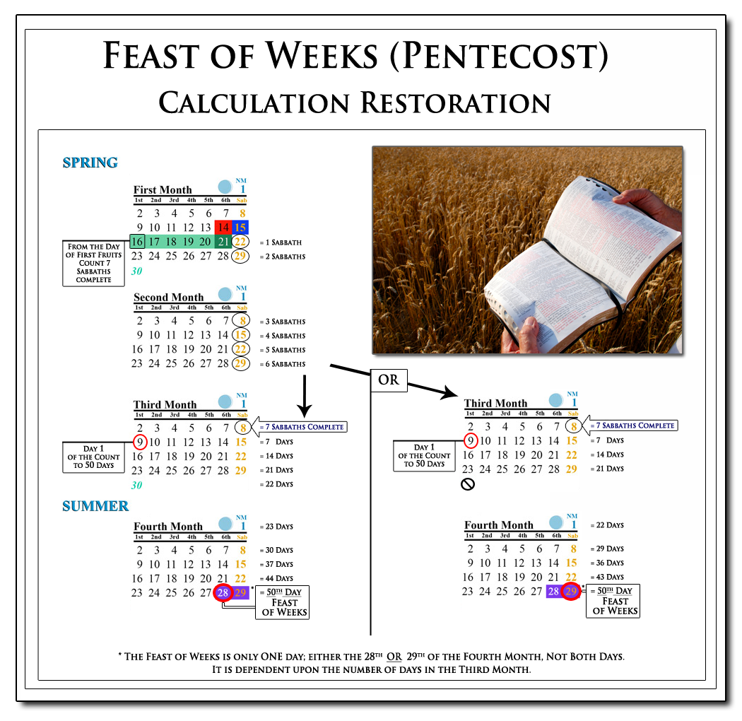 Chart showing the count to Pentecost: 7 Lunar Sabbaths + 50 Days, Counting from Wave Sheaf