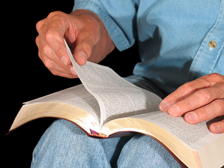 Person studying the Bible
