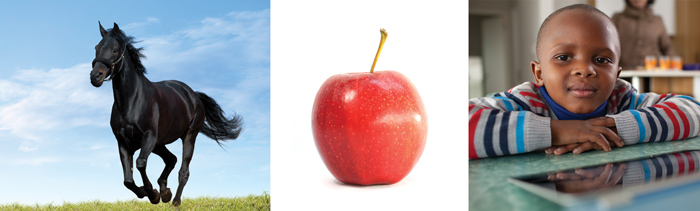 horse, apple, child