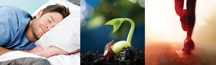 man sleeping, plant growing, person running