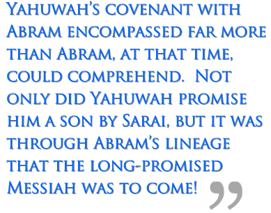 Yahuwah's covenant with Abram encompassed far more than Abram, at that time, could comprehend.  Not only did Yahuwah promise him a son by Sarai, but it was through Abram's lineage that the long-promised Messiah was to come!