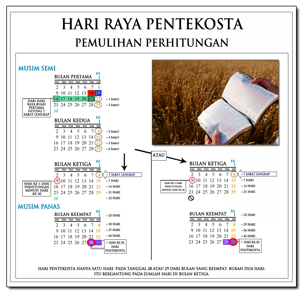 Grafik yang menunjukkan jumlah Pentakosta: 7 Lunar Sabat + 50 Hari, Menghitung dari gelombang Sheaf