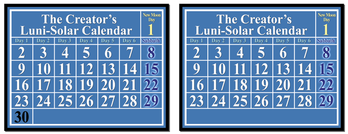 lunar-solar calendar