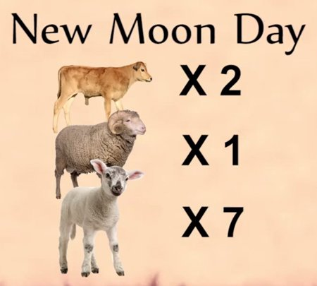 New Moon Day Sacrifices