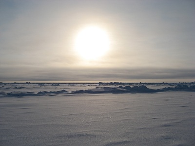 https://media.worldslastchance.com/images/2015/11/05/20125/north-pole.jpg