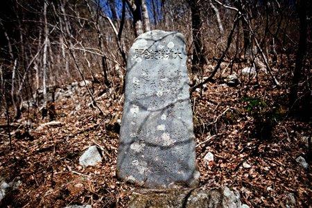 tsunami stone