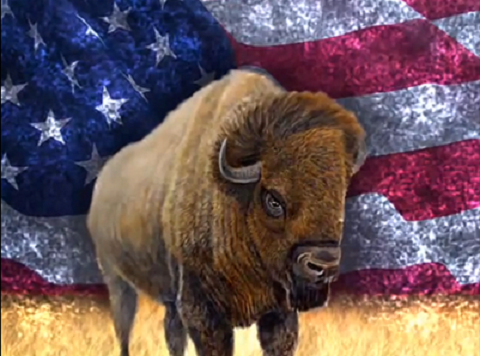 USA - Beast from the Land (Revelation 13)