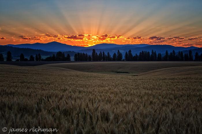 Matahari terbenam pada cakrawala gunung yang indah (Gambar digunakan dengan izin dari James Richman)
