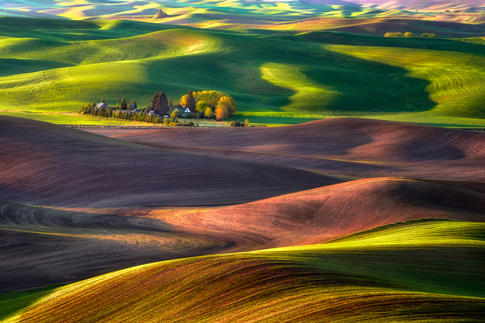 dry land wheat farming (Image used by permission of Michael Brandt Photography)