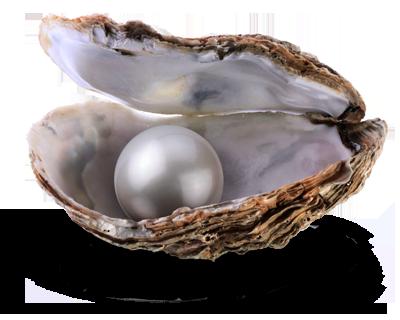 Kostbare Perle