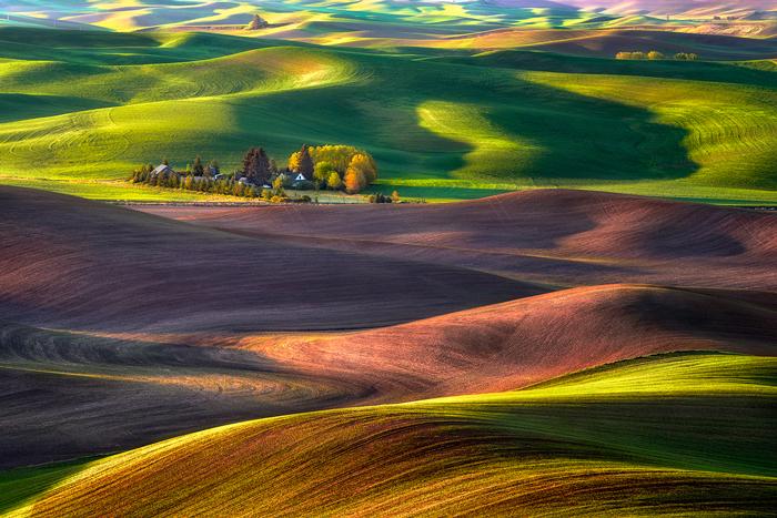"""""""마른 땅 밀 농장 (Michael Brandt Photography 의 허락에 의해 사용된 이미지)"""
