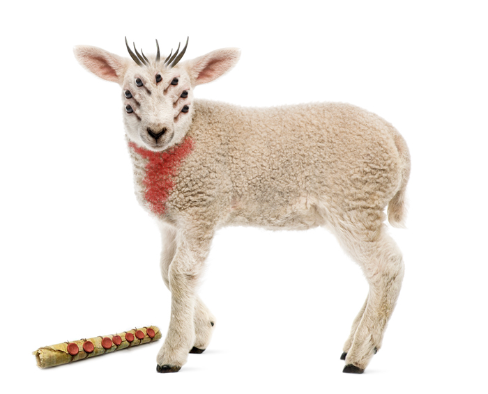 Anak Domba Yahuwah