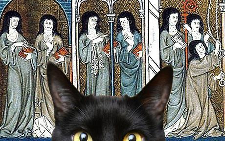 suster yang mengeluarkan suara kucing