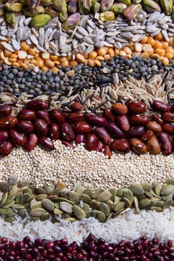 céréales et grains