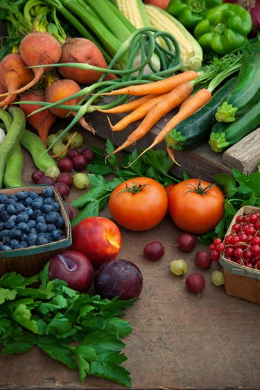 Les produits biologiques, fruits et légumes : carottes, tomates, courgettes, céleri branche, poivron vert, épi de maïs, haricots, navets, oignons verts, persil, prunes, groseille, myrtilles.