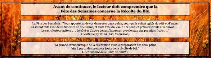 La Fête de la Pentecôte concerne la Récolte du Blé; Lévitique 23:17-20, commentaire.