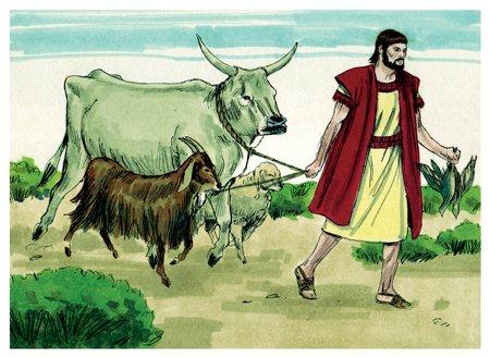إبراهيم يحضر ذبائح العهد