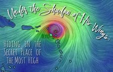 Under the Shadow of His Wings: Hiding in the Secret Place of the Most High