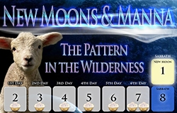 New Moons & Manna - The Pattern in the Wilderness