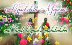 Kusekelela Mapowe aaCiindi lisyuuka malubaluba