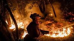Death toll rises to 40 as firefighters continue to battle massive California wildfires