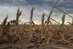 """20 Million Could Starve To Death In Coming Months"" As Bio-Systems Of Earth Are Imploding"