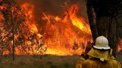 Three dead in 'unprecedented' fires in Australian state of New South Wales