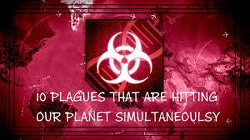 10 Plagues That Are Hitting Our Planet Simultaneously