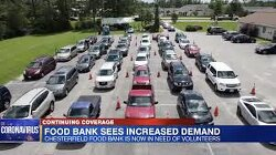 Massive Lines Form Outside Virginia Food Bank As Demand Hits One Million Meals Per Month