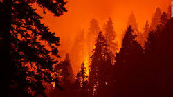 Smoke from the US West Coast wildfires has reached Europe
