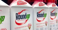 New Research Adds Evidence That Weed Killer Glyphosate Disrupts Hormones