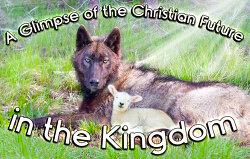 A-Glimpse-of-the-Christian-Future-in-the-Kingdom