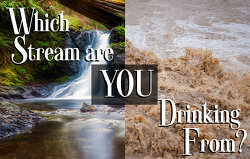 which-stream-are-you-drinking-from