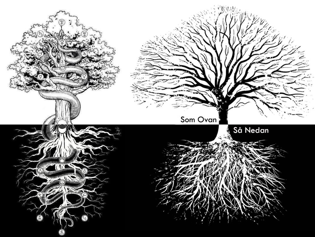 som ovan så nedan träd
