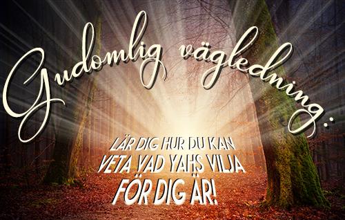 Gudomlig vägledning: Lär dig hur du kan veta Yahs vilja för dig personligen!