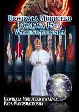 Ukwikala Mubuteko bwakwa Papa Wakushalikisha